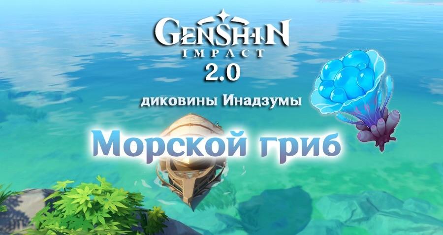 Где найти морские грибы в Genshin Impact