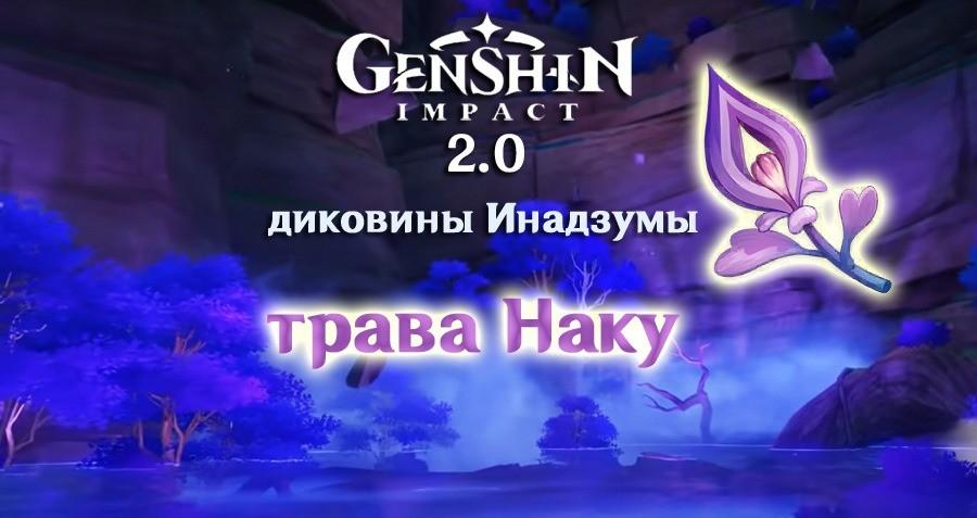 Трава наку в Genshin Impact где найти в Genshin Impact