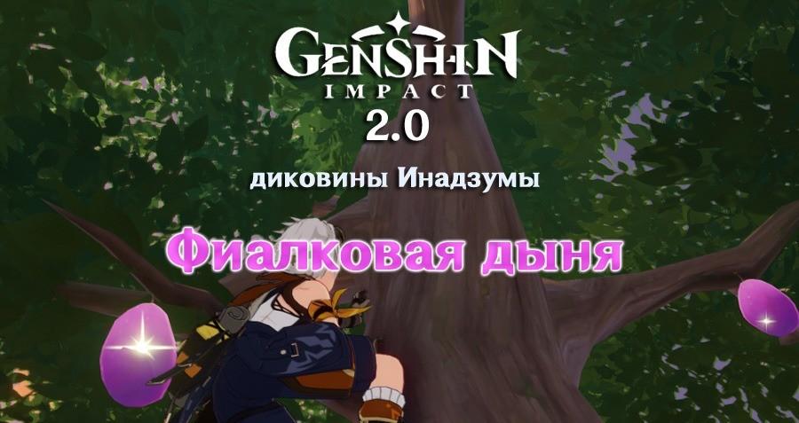 Фиалковая дыня в Genshin Impact